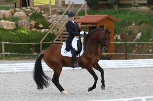 Escorial dressage